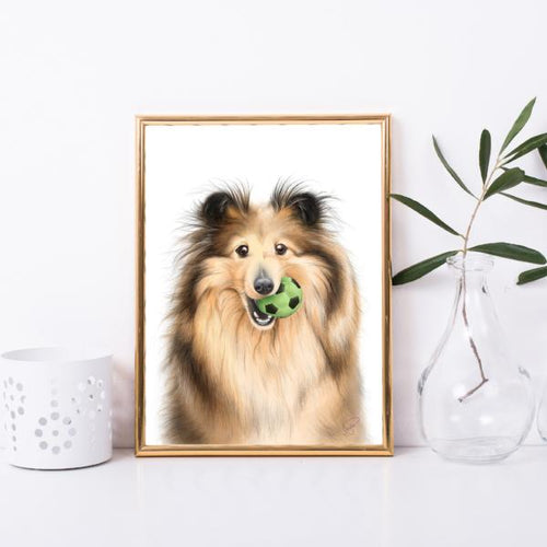Shetland Sheepdog wall art