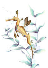 Load image into Gallery viewer, Weedy Seadragon Art Print
