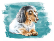 Load image into Gallery viewer, Dachshund illustration