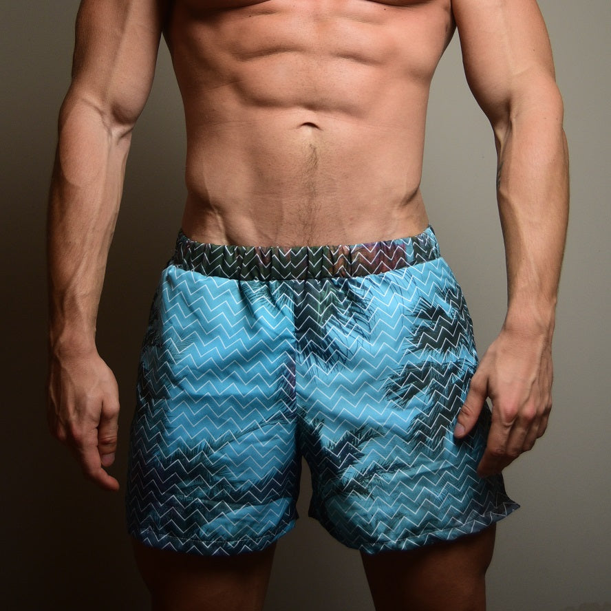 PALMS swim shorts