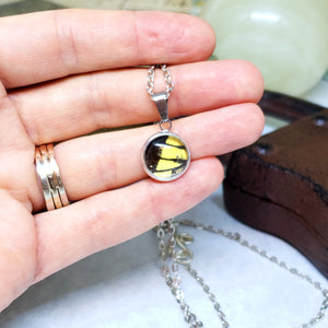Eastern Tiger Swallowtail Butterfly Tiny Necklace - The Steampunk Butterfly