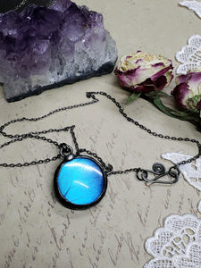 Blue Morpho Butterfly Necklace - Two-Sided Large Circle Smooth Shape in Gunmetal - The Steampunk Butterfly