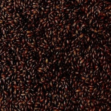 Weyermann Roasted Barley