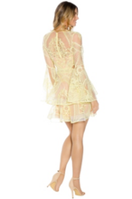 Load image into Gallery viewer, Thurley Chameleon Mini Dress