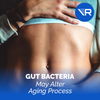 Bacteria in the Gut May Alter Aging Process — New Study