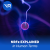 NRF2 Explained (In Human Terms)