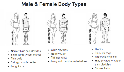 three body types