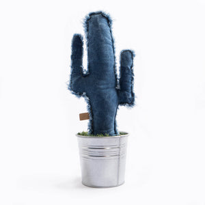 cactus denim textura decorativo con maceta