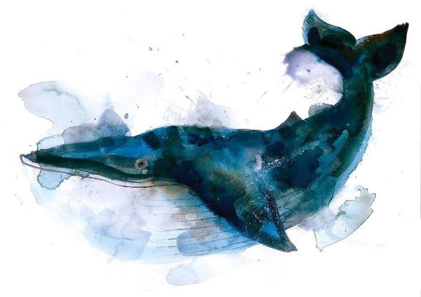 Blue Whale, Gavin Dobson, Limited Edition print, Animal art, Blue, Nature