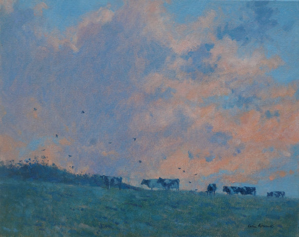 Allbrook Cattle and Evening sky. Cattle on the skyline against orange sky