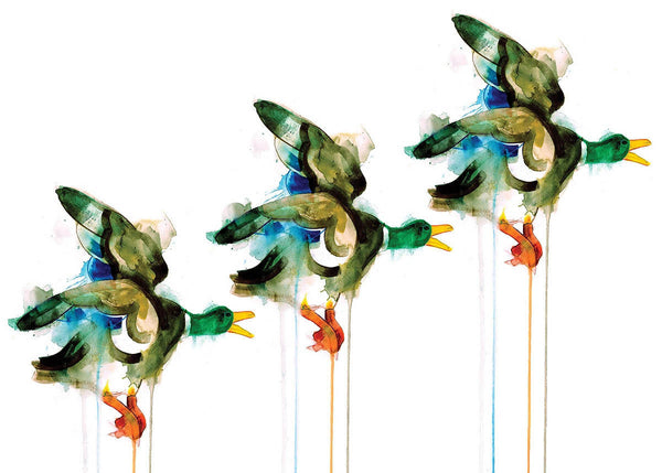 Three Flying Ducks, Gavin Dobson, Limited Edition Print, Bird art, Animal Art