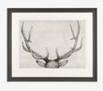 Guy Allen_The Gunton Set_Etching_90x110cm_framed
