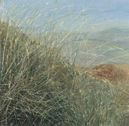 Looking through the grasses-Judith Yarrow - Wychwood Art