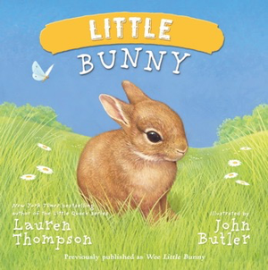BOOK - LITTLE BUNNY