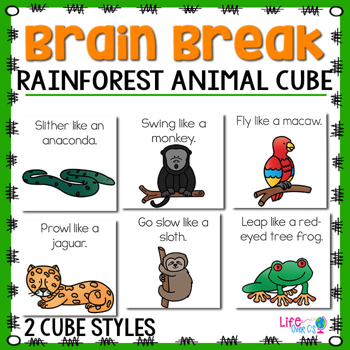 Brain Break Cube | Rainforest Animal Theme