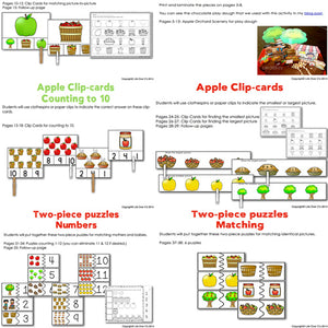 This apple activity pack is guaranteed to catch your students' attention! Practice patterns, sorting, reading/writing/tracing, matching and much more!