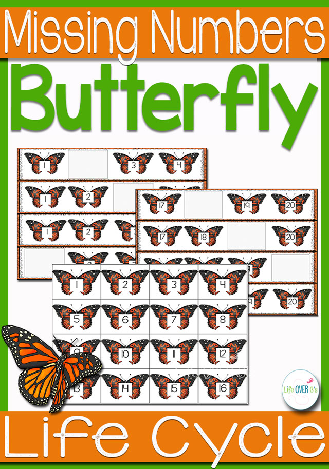 Butterfly Life-Cycle Missing Number