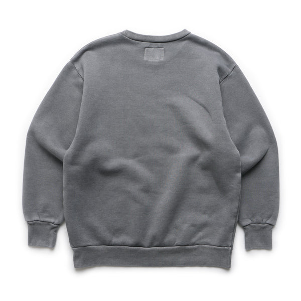 College Design Crewneck Sweatshirt - Gray