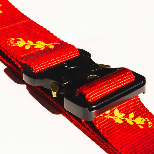 Webbing Belt w/ Alloy Buckle Red