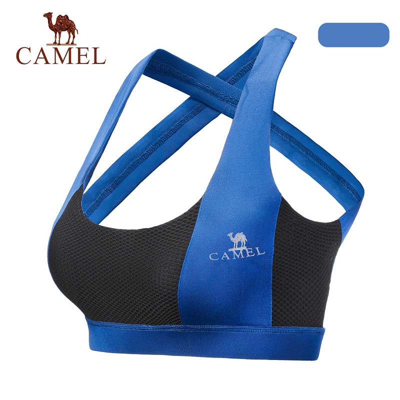 Women's Sports Bra in Blue - CAMEL