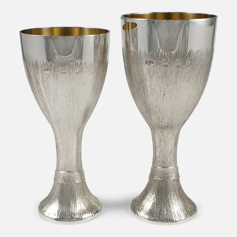 the two cups viewed from the back