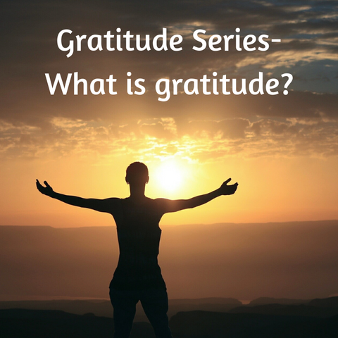 Gratitude Series: #1 What is gratitude?