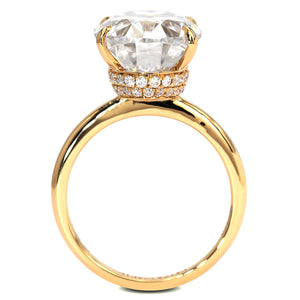 Hailey Double Hidden Halo Oval Moissanite Ring - Lecaine Gems Moissanite