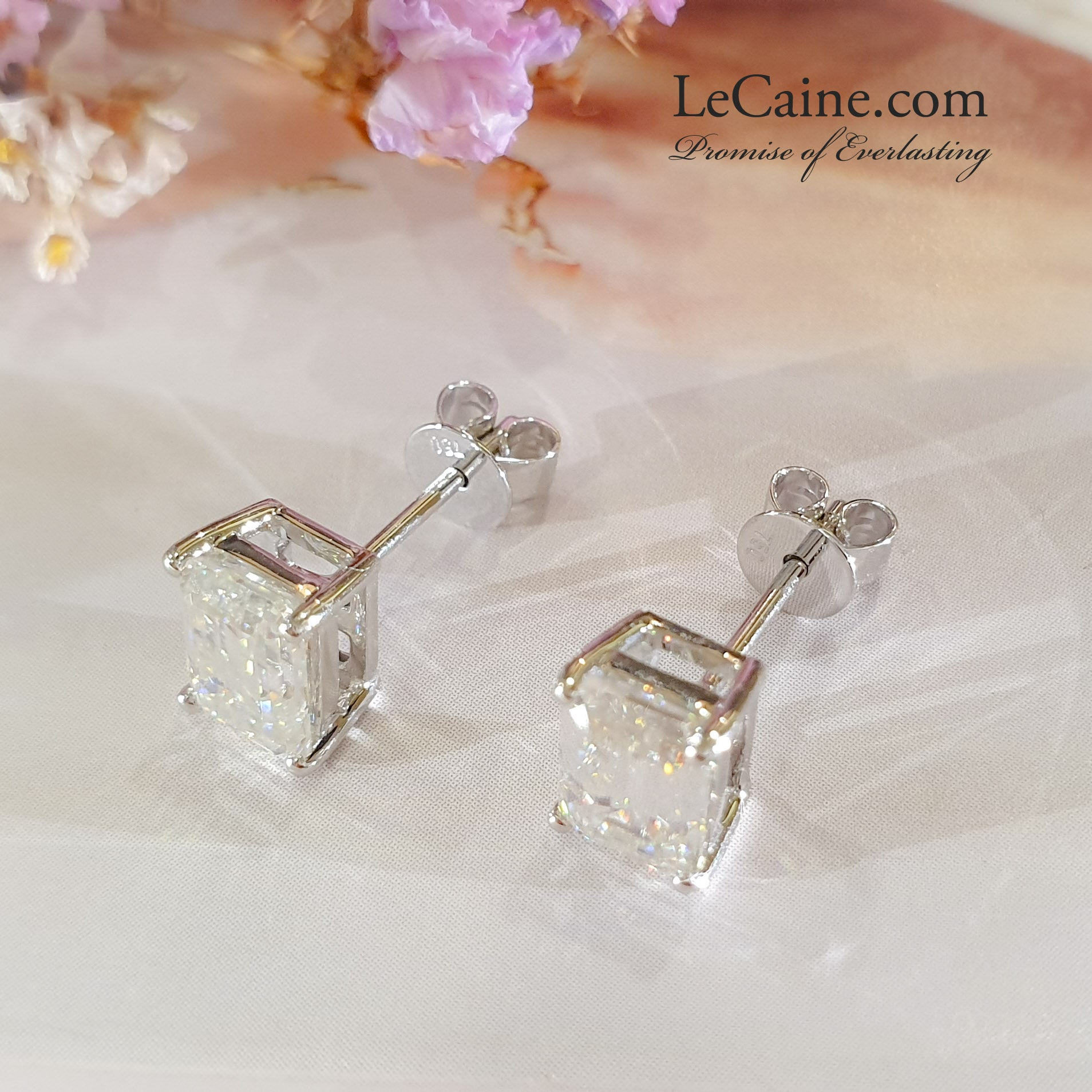 1 Carat Emerald Cut Moissanite Stud Earrings