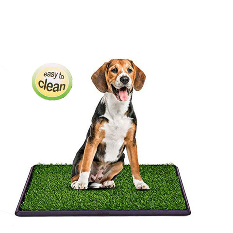 Potty Training Dog Mat