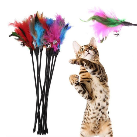 Soft Colorful Cat Feather Toy (5PC)