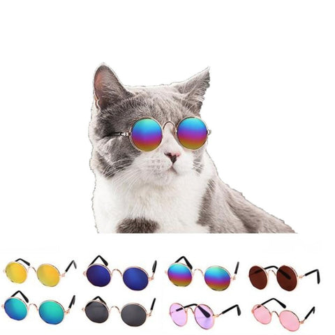 Funny Pet Sunglasses