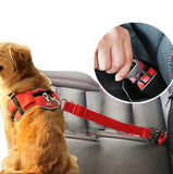 Car Dog Seatbelt & Harness