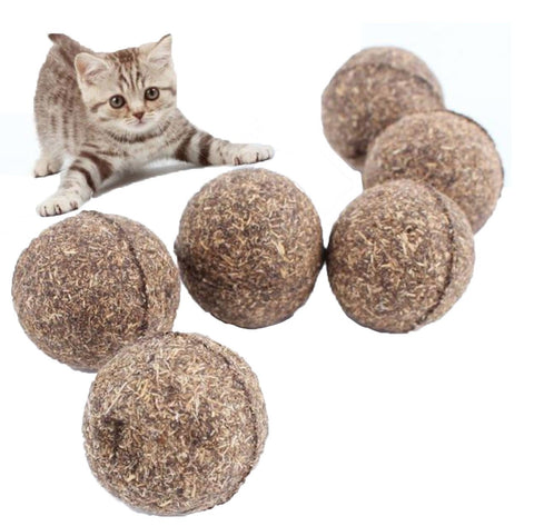 Catnip Treat Ball