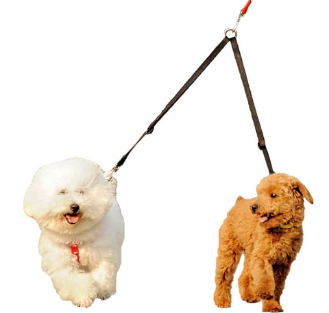 Double Dog Leash - Walk Two Dogs