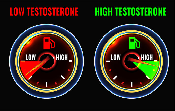 Mixing vRox And A Testosterone Booster