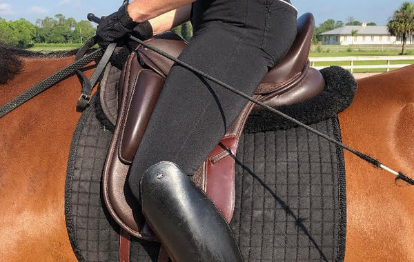 Professional Saddle Fitting