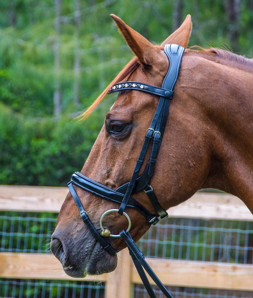 All Bridles