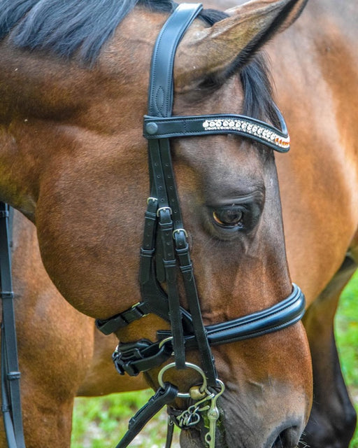 "Tota Comfort System ""Freeport "" Double Bridle"