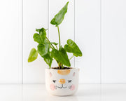 Planter - Tilly Cat - 10x10x7