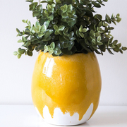Dripping Mustard Egg Planter - HG195