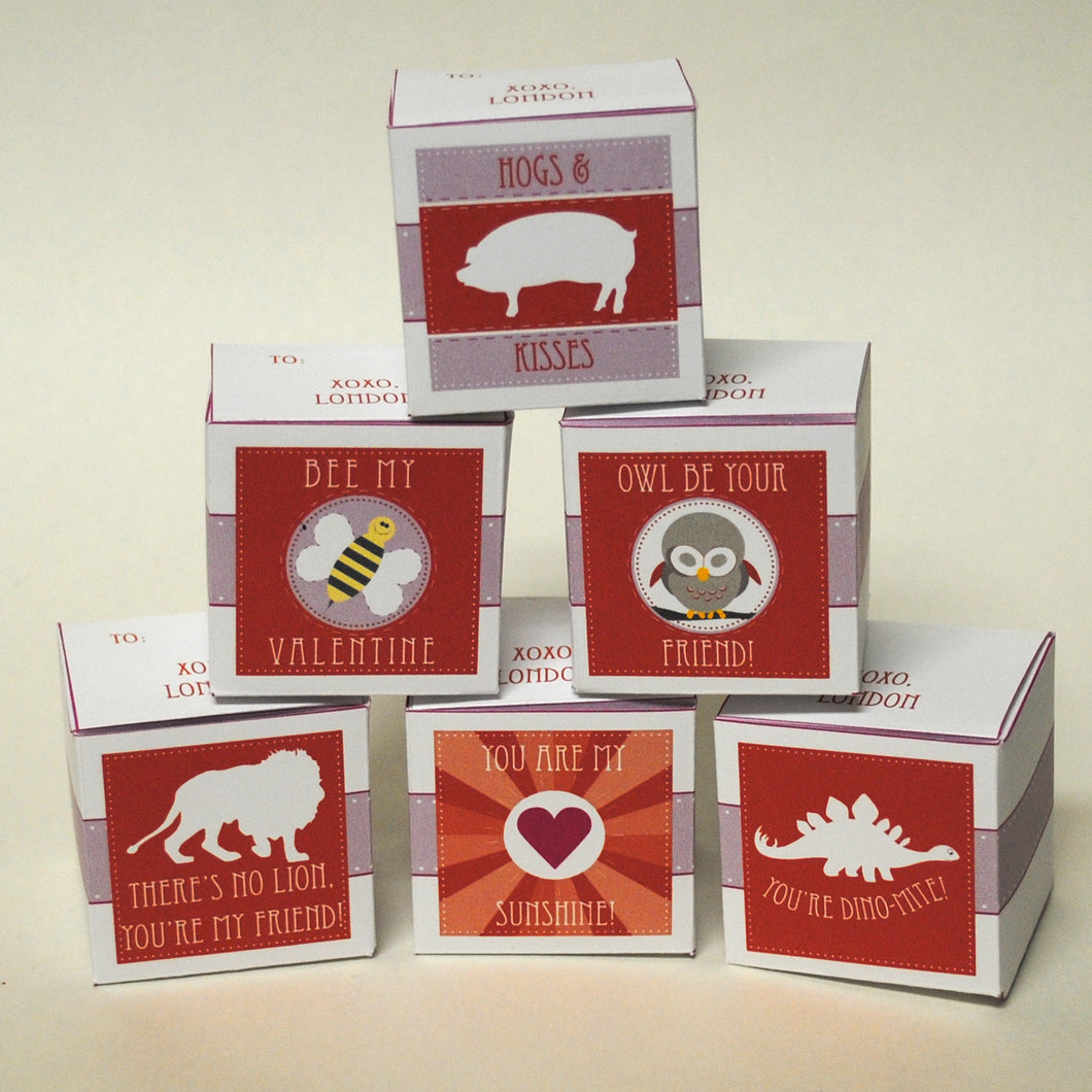 Valentine Favor & Treat Boxes