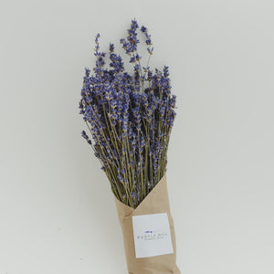 Dried Lavender Bundle (Grosso)