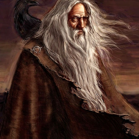 Oldman in ragged cloak with raven on his shoulder. Provenance unclear,listed as free to use and share--Viking Dragon Blogs