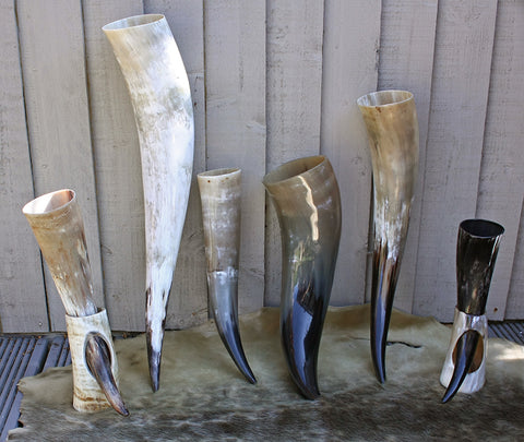 Viking Drinking Horns from The Viking Dragon - Feasting Supplies