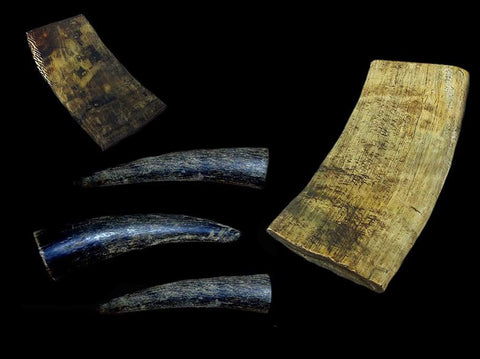 Raw Horn Pieces & Horn Tips - Raw Materials - Viking Crafts