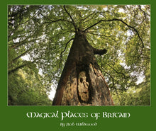 Load image into Gallery viewer, Magical Places Of Britain Book Ancient Tree - Viking Dragon Books
