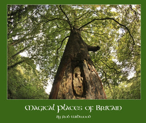 Magical Places Of Britain Book Ancient Tree - Viking Dragon Books
