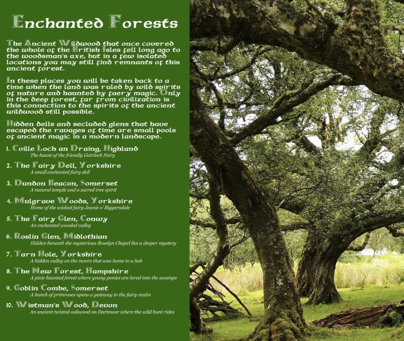 Magical Places Of Britain Book - Enchanted Forests Info - Viking Dragon Books