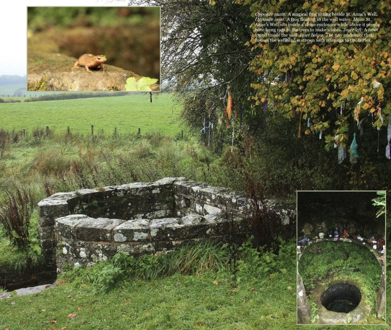 Magical Places Of Britain Book - Ancient Tree Next to St Anne's Well - Viking Dragon Books