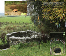 Load image into Gallery viewer, Magical Places Of Britain Book - Ancient Tree Next to St Anne's Well - Viking Dragon Books